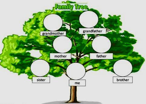 """family-tree jpg List of """"Family"""" members """"The Family"""" or """"The"""