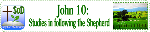 Jn10 - Studies in following the Shepherd