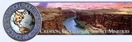 Creation Ministries banner