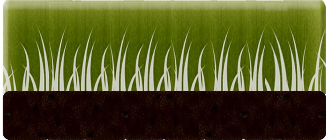 S&R grass growing